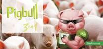Porcinos. Pigbull 3 en 1 para Lechones y Madres en Lactancia