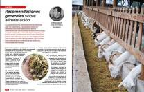 Alimentacion en caprinos lecheros