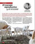 El manejo reproductivo y el encaste en caprinos