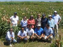 Visita al Criadero INTA EEA Manfredi de profesionales de la Red de Evaluación de Híbridos de Sorgo coordinado por la Ing. Agr. Gabriela Diaz de la EEA. Paraná