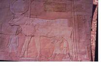 Valle de los Reyes-Egypto
