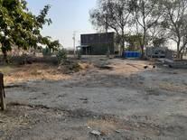 Area de secado abono organigo de Jaiba..