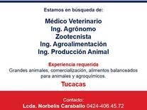 Representante de Ventas en Tucacas
