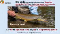 a innovative product of improve the salmon weight by 20%