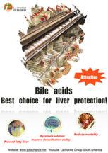 Los ácidos biliares son la mejor solución para el hígado graso.
