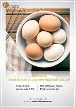 ¡Los ácidos biliares pueden aportar $ 100 más por día para sus granjas de ponedoras!