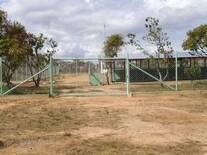 Area de Producción Porcina