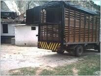 Plataforma para el transporte de cerdos y pollos