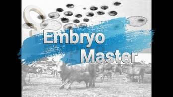 Embryo Master