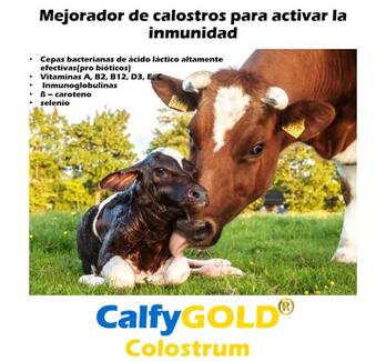 CalfyGold Colostrum