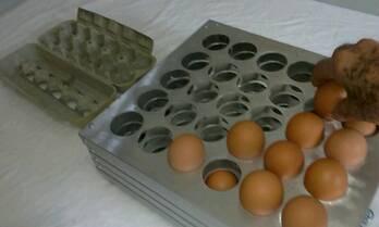 classificador de ovos