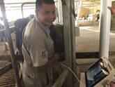 Curso virtual de diagnóstico de gestación por palpación en bovinos