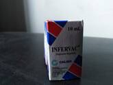 INFERVAC - INMUNOESTIMULANTE EN CANINOS Y FELINOS