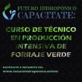 FH 300 PLUS. MODULO SEMIAUTOMATICO DE PRODUCCION INTENSIVA DE FORRAJE VERDE HIDROPONICO
