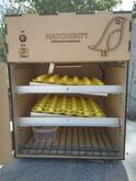 Incubadora Automática para Huevos, capacidad 60 huevos gallina, codorniz, volteo automático
