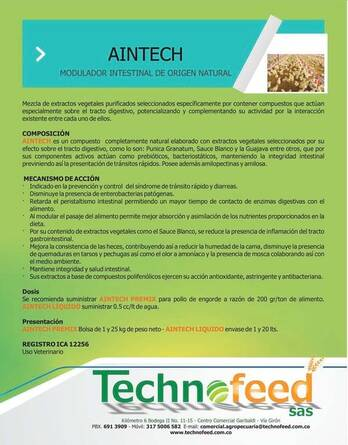 AINTECH