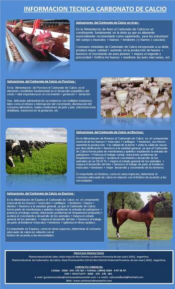 Carbonato de Calcio Nutrición Animal ( Acuicultura )