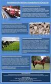 Carbonato de Calcio Nutricion Animal  para Equinos