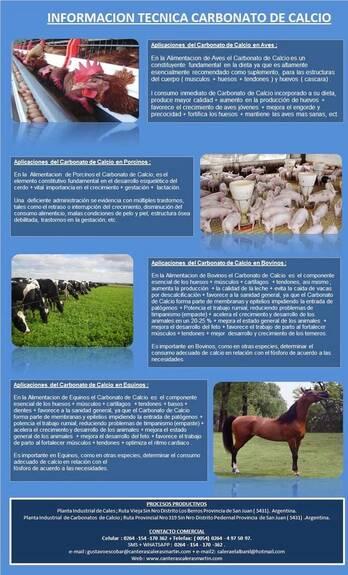 Carbonato de Calcio Nutricion Animal para Gallinas Ponedoras