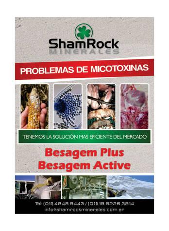 BESAGEM SORBENTE DE MICOTOXINAS