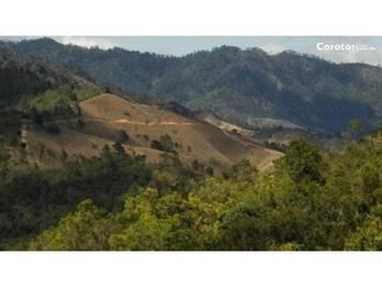 VENDO EN CONSTANZA 124,000 MT, PRECIO RD$150.00 X MT, COLONIA KENNEDY