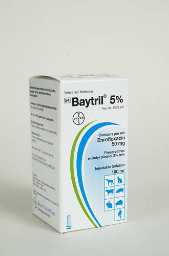 BAYTRIL 5% 100ML