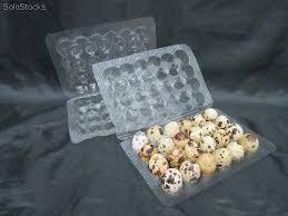 Empaques para huevos de codorniz