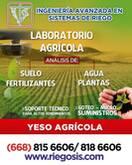 YESO  AGRICOLA  APLICACION AL SUELO  Y POR SISTEMA DE GOTEO
