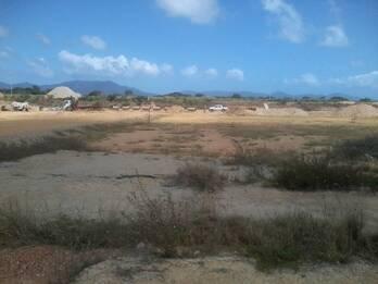 Ecoagri de Venezuela. Realiza trabajos de mitigación en obras de construcción, re-forestación con pl