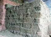 Fardos de alfalfa de Santiago del Estero en Caba