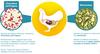 Probiótico - Prebiótico en aves