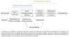 Aditivos antimicotoxinas