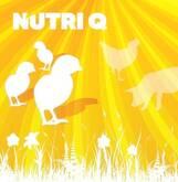 Nutri Q - Pollos parrilleros