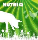 Nutri Q - Porcinos