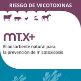 MT.x+ Adsorbente natural contra micotoxicosis