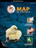 MAP La Revista Nº 6 - Diciembre