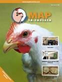 MAP La Revista Nº 6 - Diciembre 2010