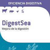 DigestSea