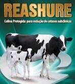 Reashure, Suplemento energetico para rumiantes