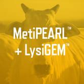 MetiPEARL™ + LysiGEM™