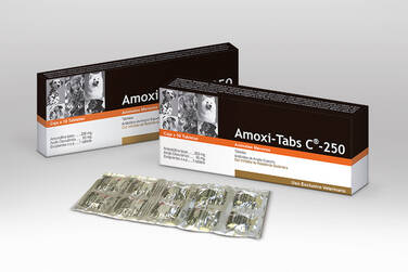 Amoxi-Tabs C® 250