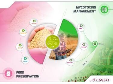 Mycotoxins Management and Feed preservation