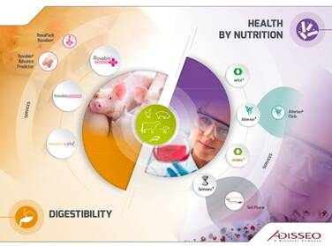 Health by Nutrition and Digestibility