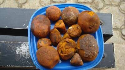 Cow /Ox Gallstones for sale