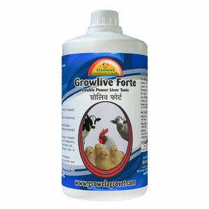 Growlive Forte is a Double Power Cattle & Poultry Liver Tonic for preventing hepatic disorders - diseases and better FCR