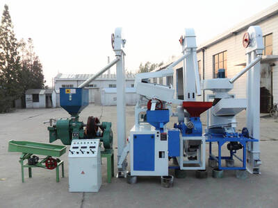 rice mill plant low cost price