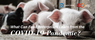 What Can Feed Enterprises Learn from the COVID-19 Pandemic?