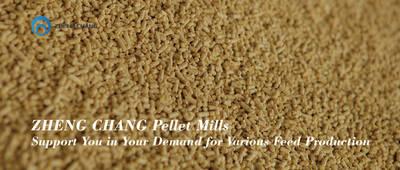 ZHENG CHANG Pellet Mill