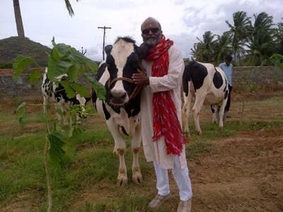 amar kirti farms