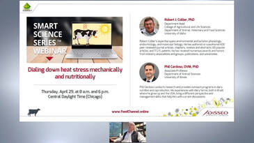 Dialing Down Heat Stress Mechanically and Nutritionally